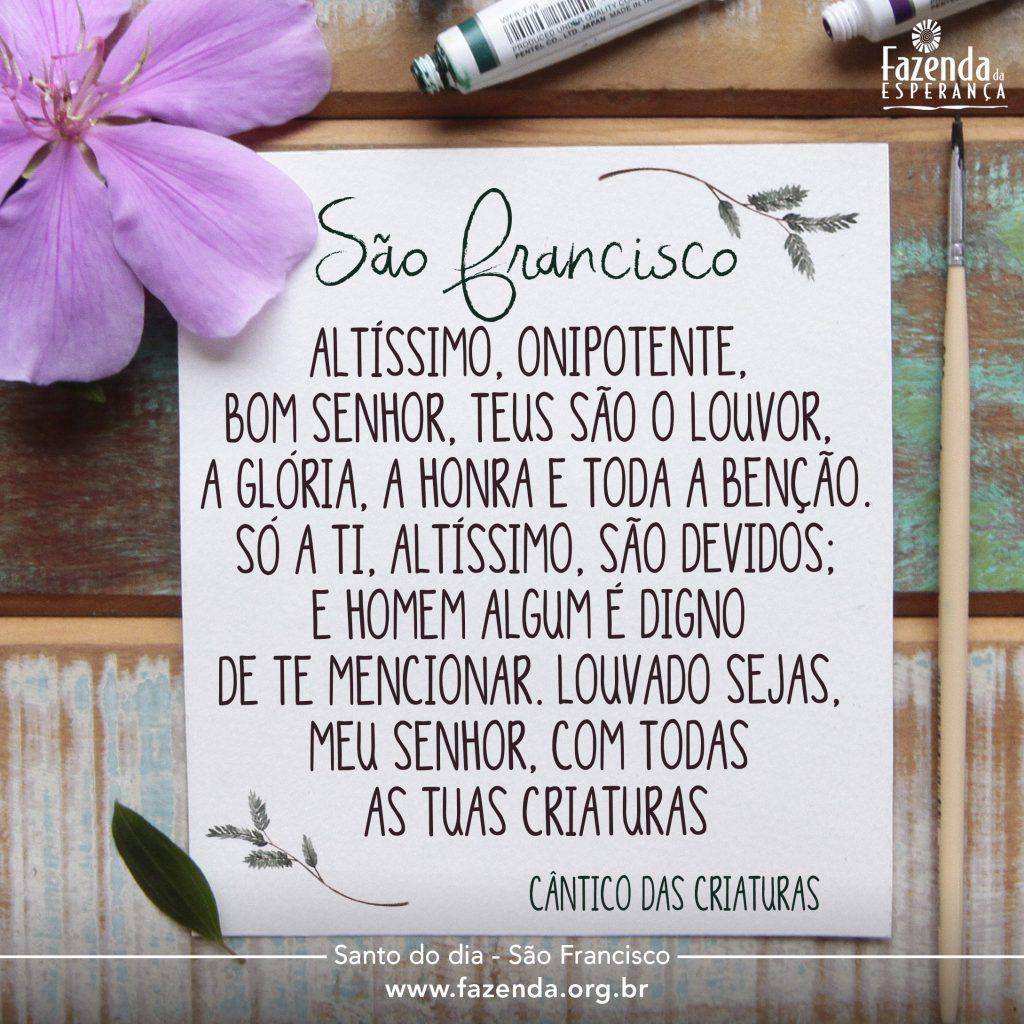 frasesanto_saofrancisco